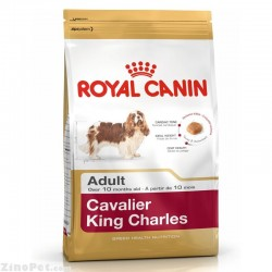 غذای خشک سگ کاوالیر کینگ جارلز بزرگسال رویال کنین