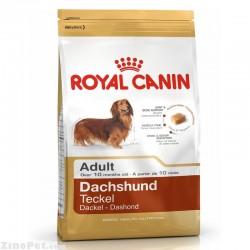 غذای خشک سگ نژاد داشهوند بزرگسال - ادالت رویال کنین