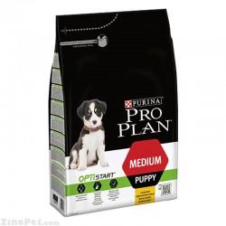 غذای خشک سگ نژاد متوسط توله - پاپی پروپلن