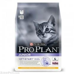غذای خشک گربه جوان - جونیور پروپلن