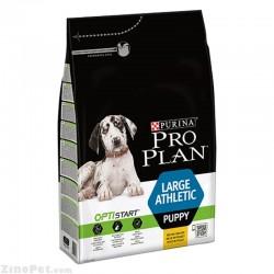 غذای خشک سگ توله - پاپی نژاد بزرگ فعال و ورزشی پروپلن