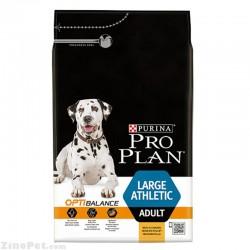 غذای خشک سگ نژاد بزرگ ورزشی و فعال بزرگسال- ادالت پروپلن