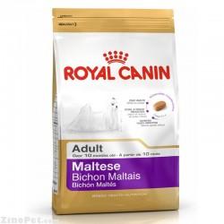 غذای خشک سگ نژاد مالتیز بزرگسال - ادالت رویال کنین