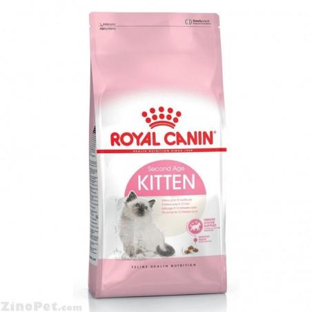غذای خشک گربه کیتن 36 رویال کنین