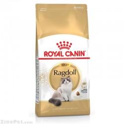 غذای خشک گربه نژاد راگدول - ادالت رویال کنین