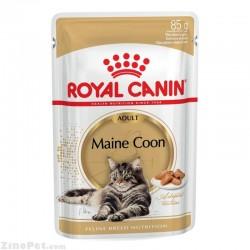 غذای تر یا پوچ گربه نژاد مین کون بزرگسال - ادالت رویال کنین