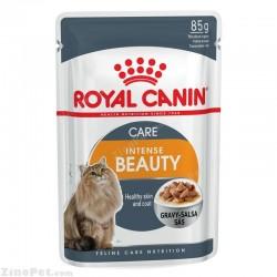 پوچ گربه برای زیبایی پوست و موی در گوشت رویال کنین