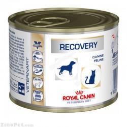 کنسرو ریکاوری سگ و گربه مخصوص دوران نقاهت و بیماری رویال کنین