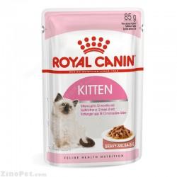 پوچ مخصوص بچه گربه در گوشت رویال کنین