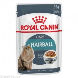 پوچ مخصوص گربه مبتلا به هربال در گوشت رویال کنین