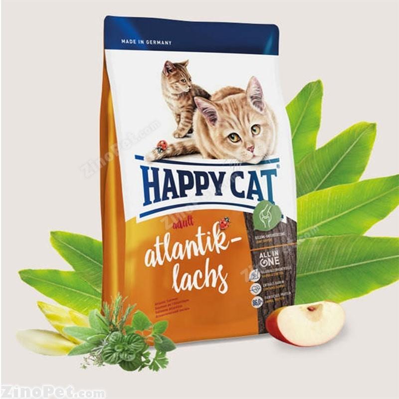 غذای خشک گربه با طعم سالمون بزرگسال - ادالت هپی کت