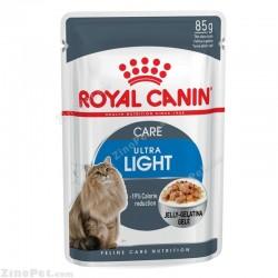پوچ مخصوص گربه چاق و کاهش وزن در ژله رویال کنین