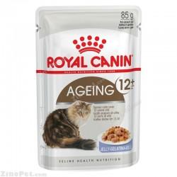 پوچ مخصوص گربه بالای ۱۲ سال در ژله رویال کنین