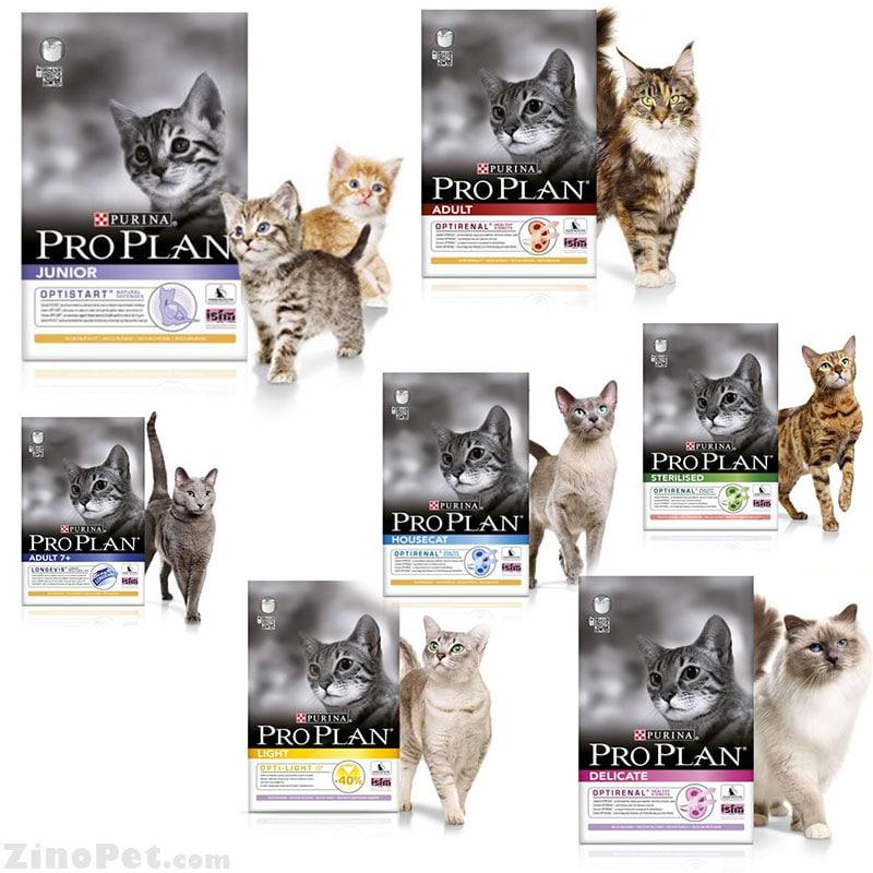 غذای خشک گربه پروپلن