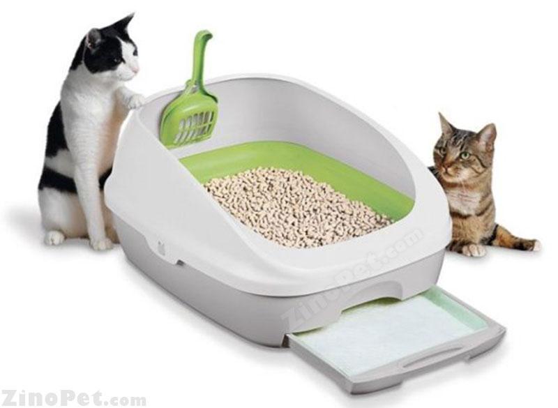 توالت گربه